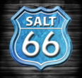 Salt 66 - Logo